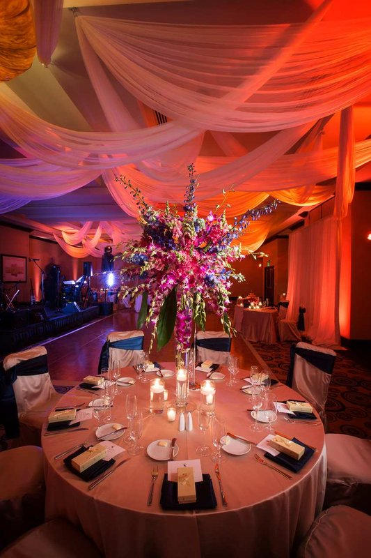 Vacation deals to hilton fort lauderdale beach resort for Hilton fort lauderdale beach resort wedding