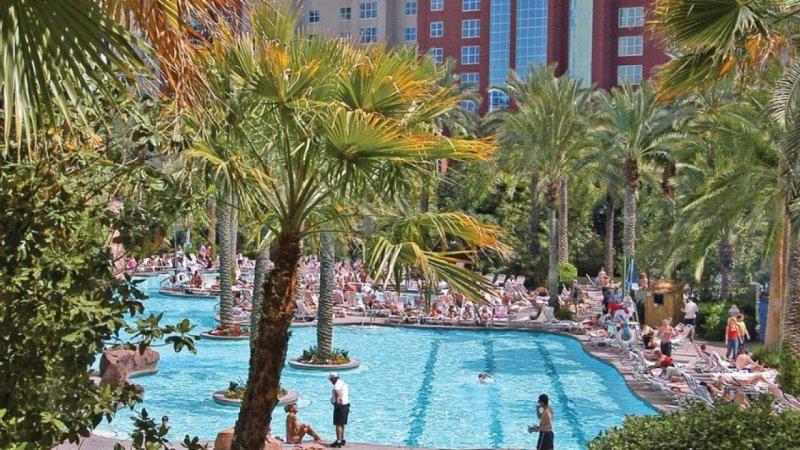 Cheap Deals Flamingo Hotel Las Vegas
