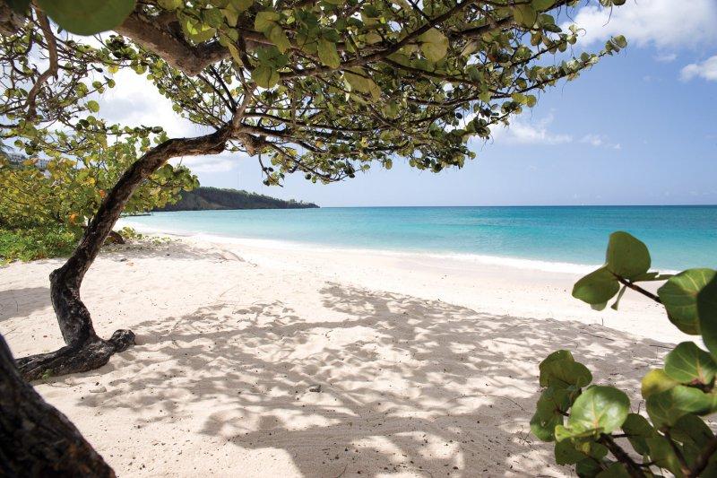 Spice Island Beach Resort Grenada Packages
