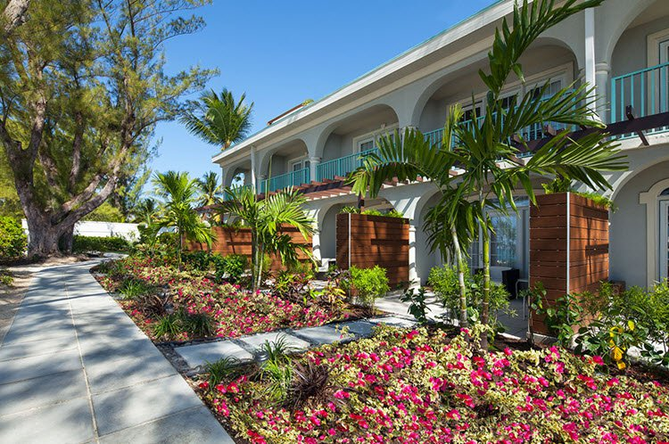 Westin Casuarina Resort And Spa Grand Cayman Cheap