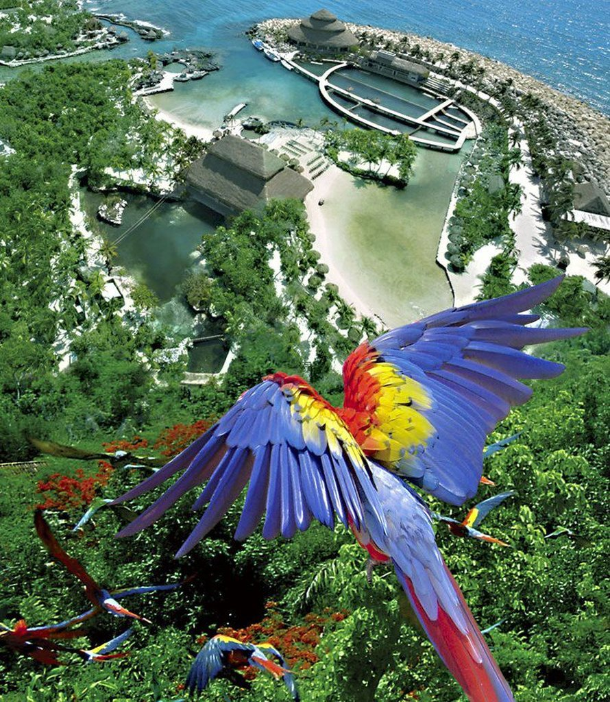 Occidental Grand Xcaret Cheap Vacations Packages