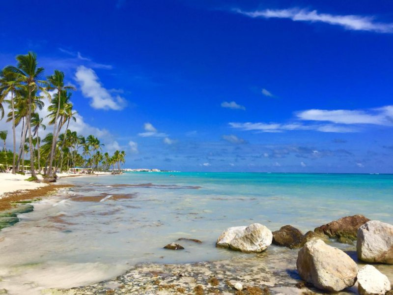 Vacation Deals To Now Larimar Punta Cana Vacation