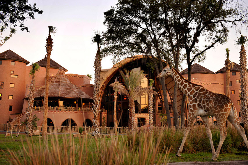 Disneys Animal Kingdom Villas Kidani Village Cheap