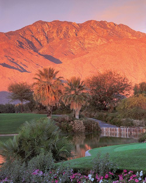 Palm Springs Tourism And Holidays Best Of Palm Springs: Palm Mountain Resort Ans Spa Vacation Deals