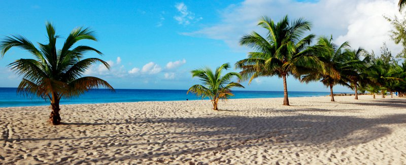 Southern Palms Beach Club Cheap Vacations Packages Red