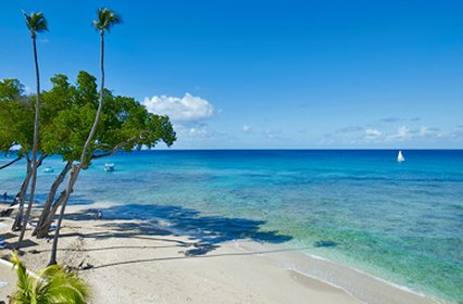 Tamarind Cove By Elegant Hotels, Bridgetown